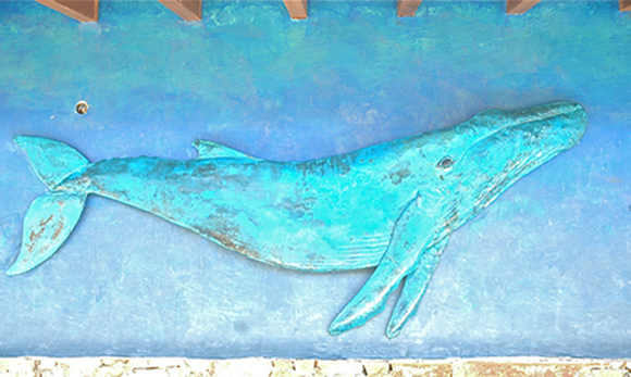 Copper Whale on Wall